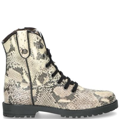 Clic veterboot